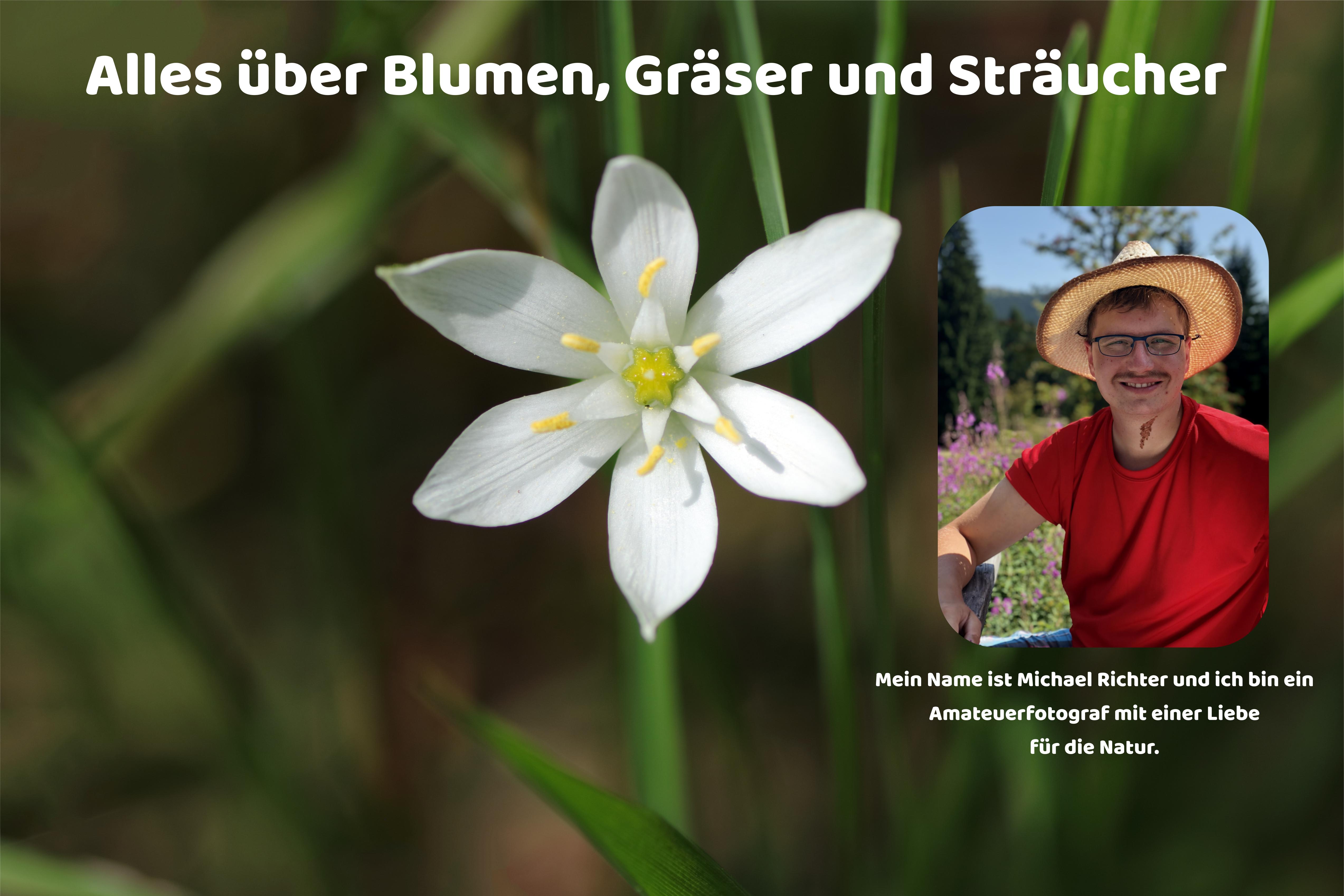 Über mich - Blumen und Natur