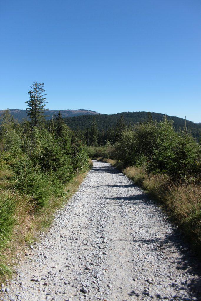 Weg auf den Großen Arber