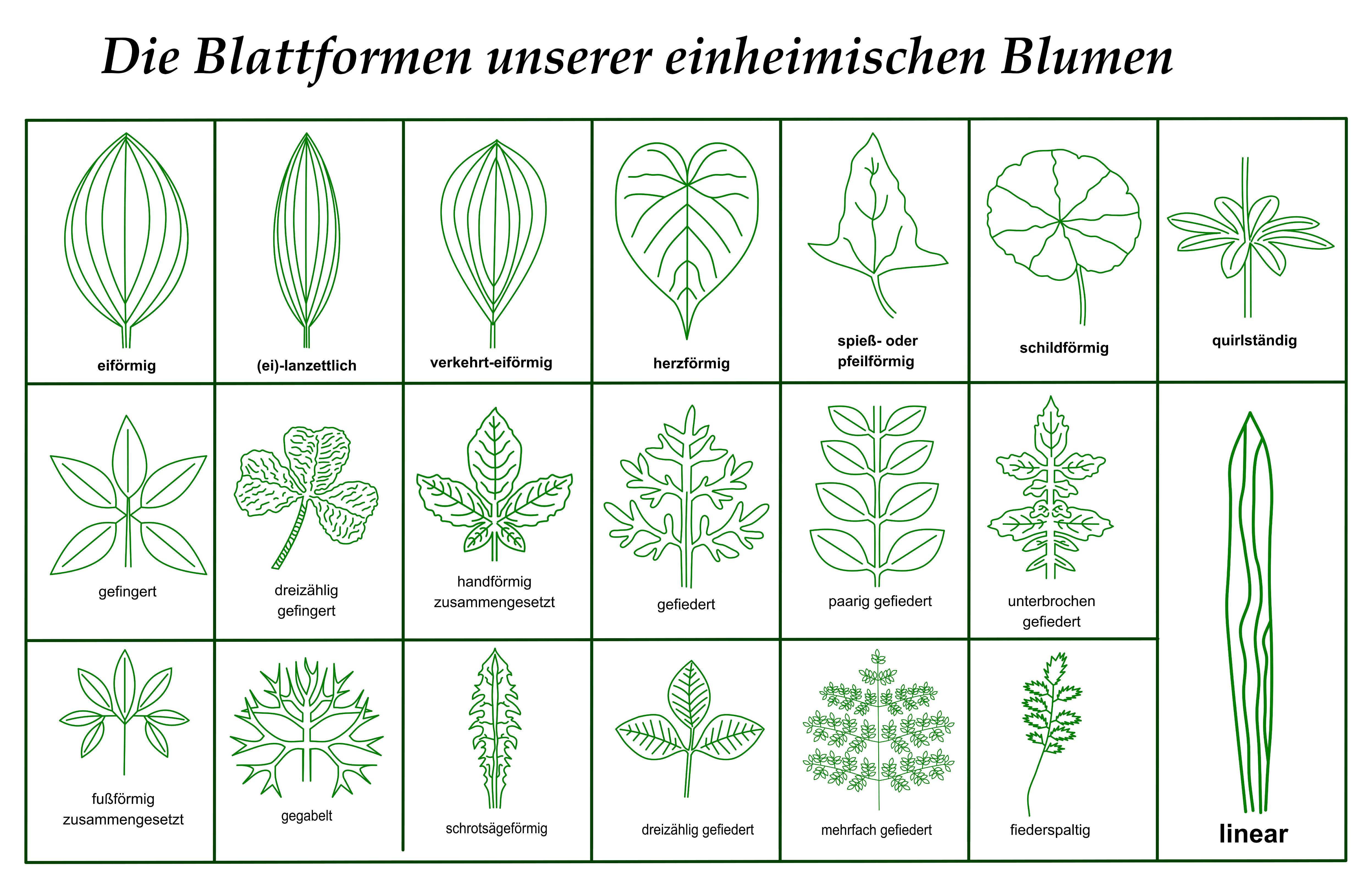 Welche Pflanzen Sterben Nach Der Blüte