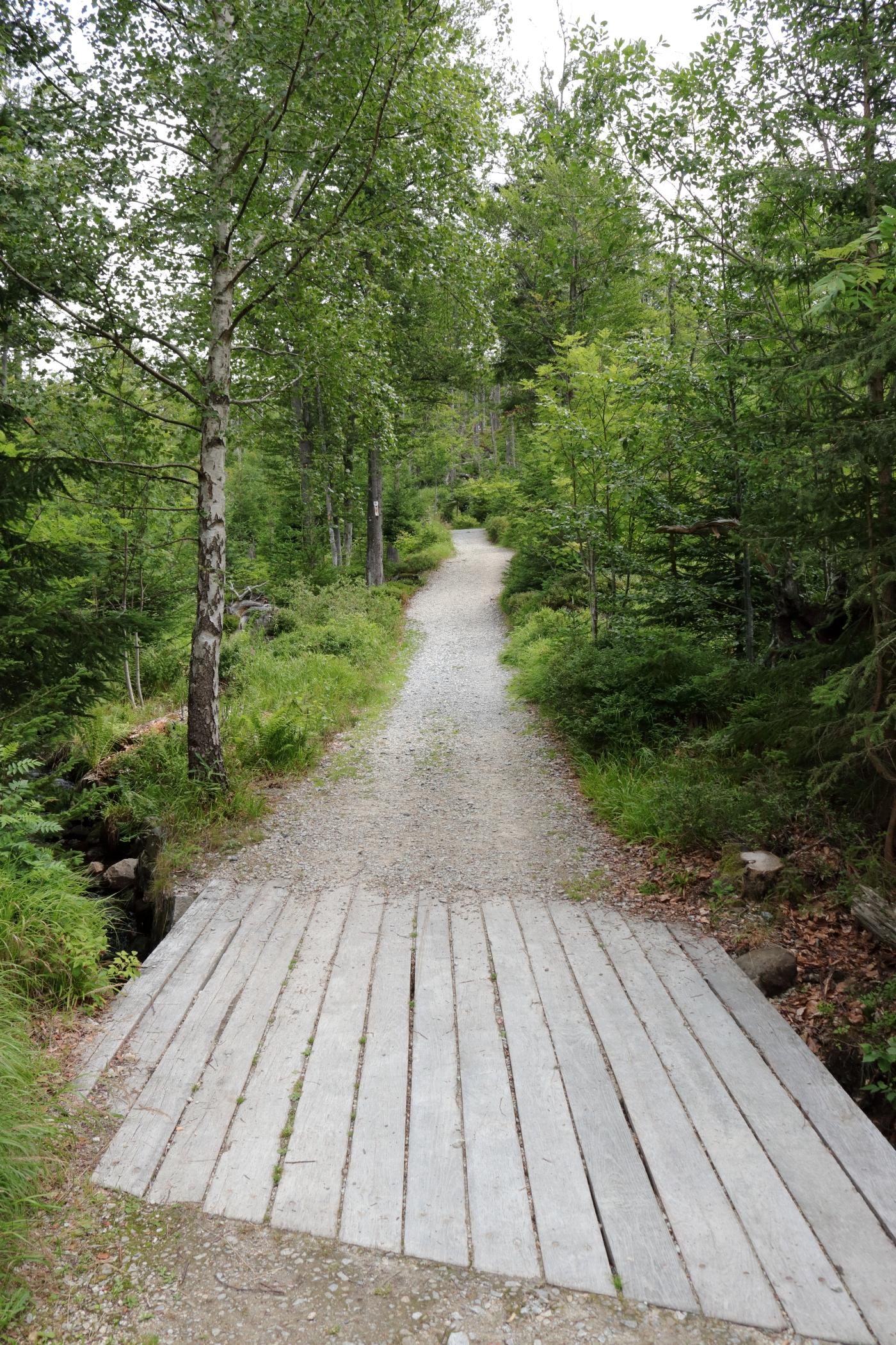 Der bequeme Weg zum Rachelsee